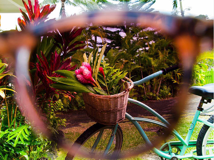 Maui-Jim-Sunglasses5